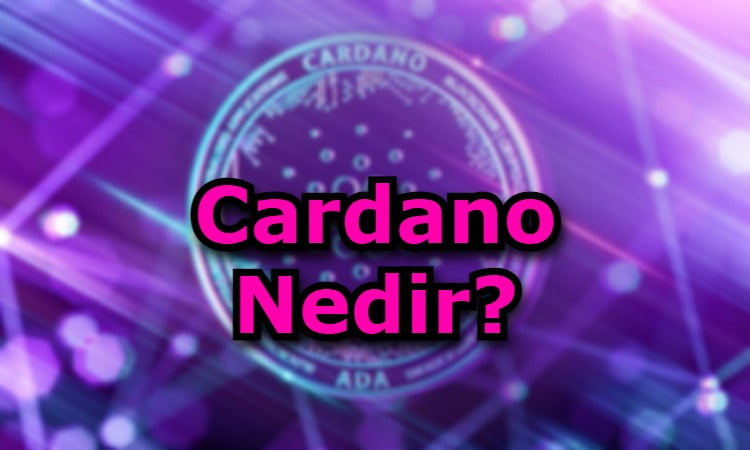 Cardano Nedir?