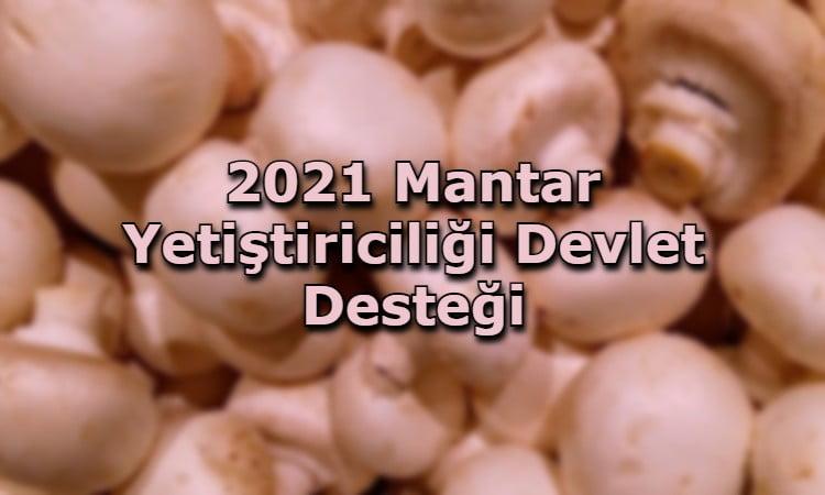 2021 Mantar Yetiştiriciliği Devlet Desteği