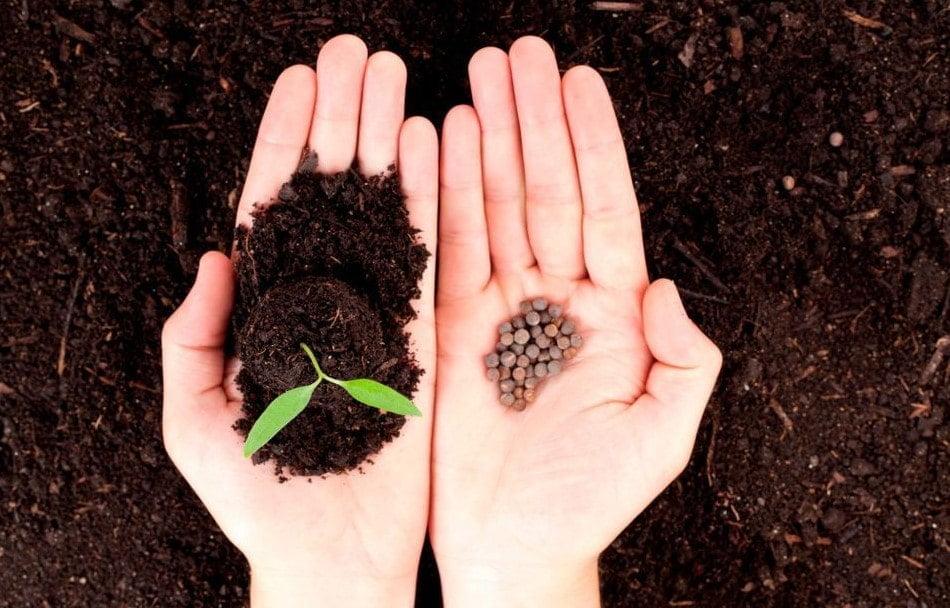 tarim kredi kooperatifi tohum kredisine basvuru sartlari