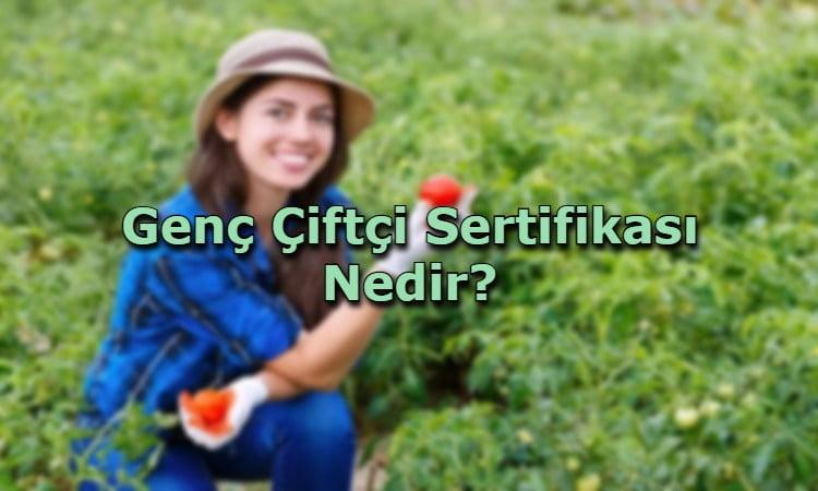 Genç Çiftçi Sertifikası Nedir?