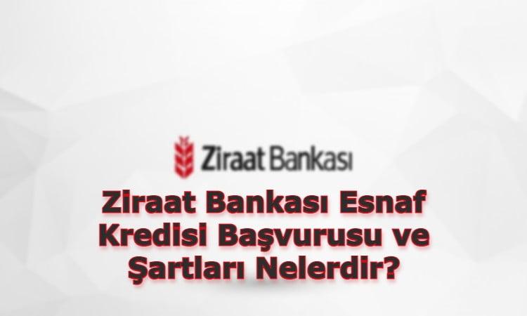 Ziraat Bankası Esnaf Kredisi Başvurusu ve Şartları Nelerdir?